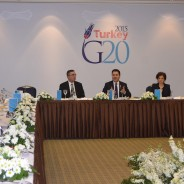 Deputy Prime Minister Babacan hosted G20 Ambassadors in Ankara at a Working Lunch