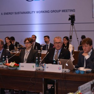 Second Meeting of the Energy Sustainability Working Group held in Istanbul